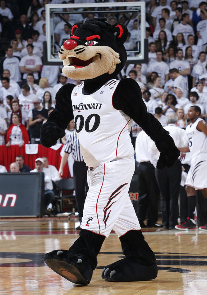 Cincinnati Bearcats mascot takes the floor during the game against the Pittsburgh Panthers at Fifth Third Arena on February 9, 2013 in Cincinnati, Ohio. Pittsburgh defeated Cincinnati 62-52. (Photo by Joe Robbins/Getty Images)