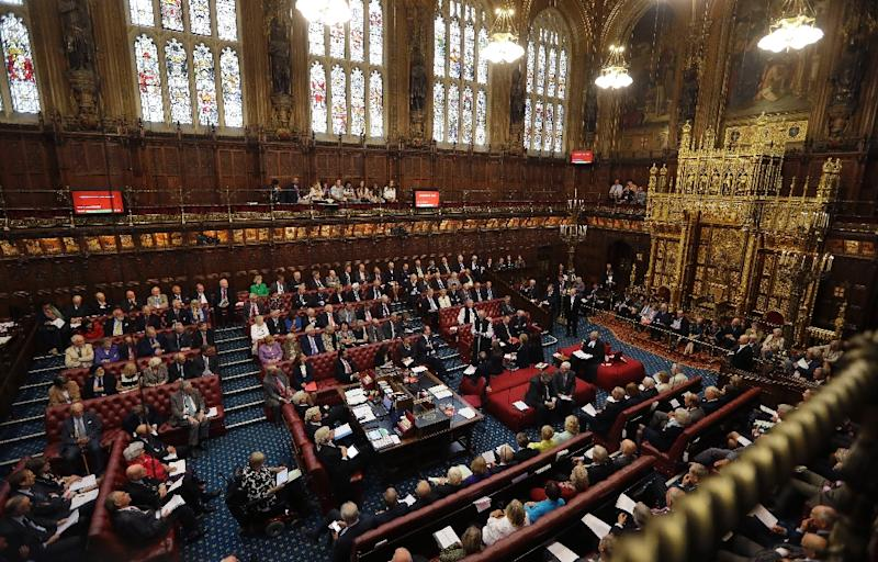 about lords principal government opposition