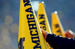 A neurologist hopes to start using the BNA test on athletes at U-M. (USA TODAY Sports)