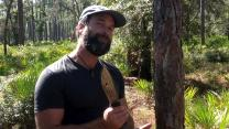 'Dual Survival': Survival 101: Making Food from Pine Trees