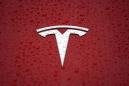Tesla ordered by German court to stop cutting down trees for Gigafactory