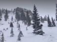 Three dead from separate avalanches in Colorado and New Mexico
