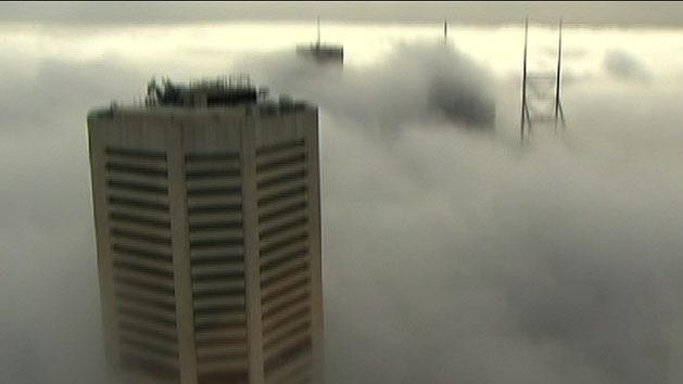 Stunning pictures of Sydney fog