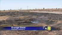 Orange Cove authorities search for suspected arsonist