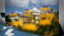 Politics Breaking News: Congress Aides Warned of Email Security Breach