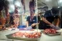 China's Shenzhen bans the eating of cats and dogs after coronavirus