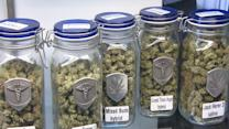 Myths of Marijuana: Former DEA Chief Says Pot Legalization a 'Disaster'