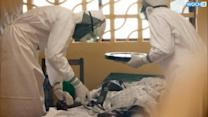 Official: Ebola Kills Senior Doctor In Liberia