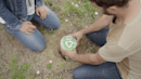 These Companies Are Creating Biodegradable Urns That Sprout Trees