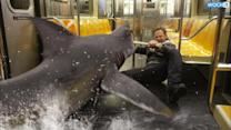 'Sharknado 2' Whipped Up Storm Of Viewers, Tweets