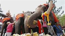 Thailand Holds National Day for Elephants