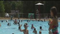 CDC study: Many public pools have poop