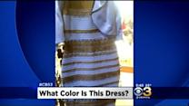 The Great Debate: What Colors Are The Dress?