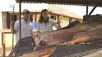 Quest for World's Best BBQ: From Intestines to Slow-Cooked Steak