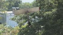 Small plane hits power lines in Doylestown; pilot injured
