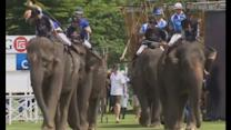 Annual elephant polo tournament kicks off in Thailand