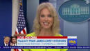 Kellyanne Conway On James Comey: 'This Guy Swung An Election'