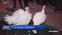 The business of turkeys