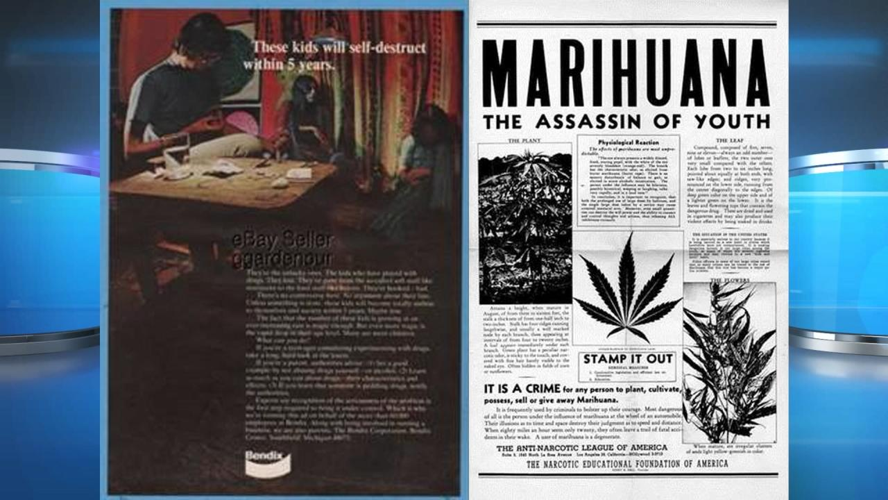Marijuana essay papers
