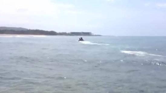 Dead whale calf towed from Kahuku Point