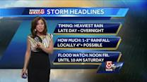 Cindy Fitzgibbon's Friday afternoon Boston area forecast