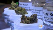 Support For Legalized Marijuana Increases