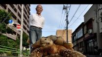 Man Walks Pet Tortoise in Japan