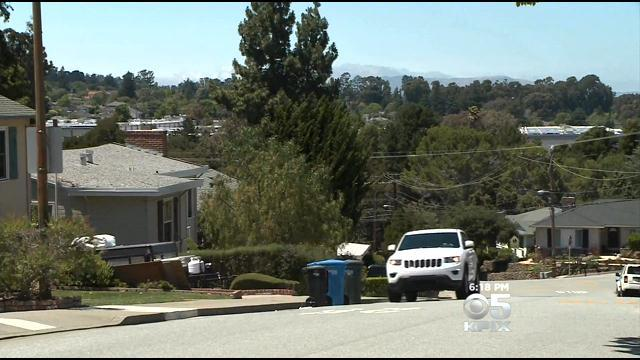 Mountain Lion Seen Attacking Deer In San Mateo Neighborhood