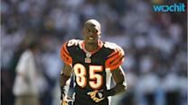 Chad Johnson: Hire Me On 'Fashion Police'
