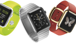 Apple, Inc. Sold Over $2.5 Billion Worth of Apple Watches in 2015
