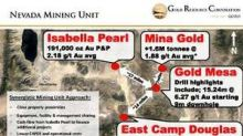 Gold Resource Corporation Acquires East Camp Douglas Gold Property in Mineral County, Nevada