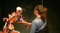 Body Worlds Vital Opens At Science Center