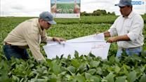 U.S. GMO Crop Companies Double Down On Anti-labeling Efforts