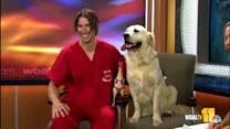 Dr. Allen brings 'Goose,' answers pet questions
