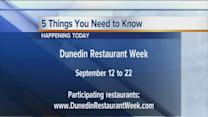 Five things you need to know happening in Florida on Thursday, September 12, 2013