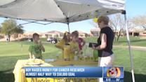 Boy sells lemonade to raise money for cancer research