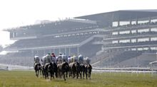 Cheltenham Festival: Who YOUR region is backing for glory in Gloucestershire