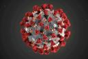 Top HIV scientist says he wouldn't count on a vaccine for coronavirus soon