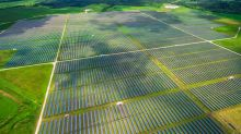 The U.A.E. Sets Its Sights on Biggest Solar Farm Ever
