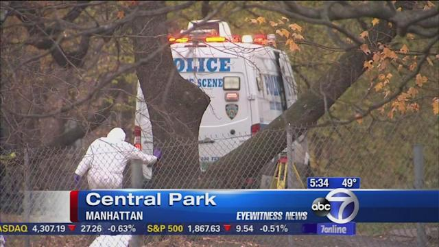 NYC crime rates down, except in city parks