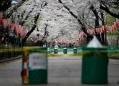 Tokyo coronavirus cases rise by daily record, residents urged to stay home