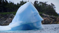 Iceberg Looks Exactly Like Batman