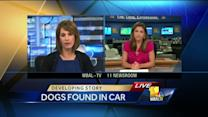 1 dog dead, 1 rescued after being found in hot car