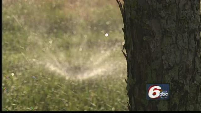 Officials Ready To Enforce Watering Ban