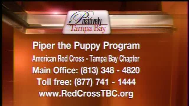 Positively Tampa Bay: Piper the Puppy
