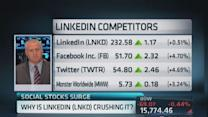 LinkedIn a high growth name: Pro