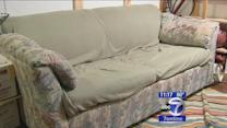 New Paltz college students find $40,000 in couch from thrift store