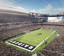 One NFL team, the Miami Dolphins, voted against the Raiders' Las Vegas move. Here's why