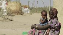 WFP Steps Up Operations to Feed Nigerian Refugees