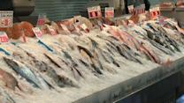 Report urges pregnant women to avoid eating tuna